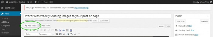 The 'add media' icon in WordPress